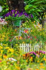 In cozy home garden on summer./ Vintage white bike and flowerpot in cozy home flowers garden on summer.