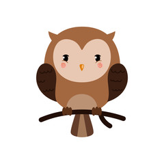 Adorable owl character.