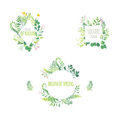 Vector cartoon abstract green plants flower herbs frame templates set. Meadow garden spring easter, women day romantic holiday, wedding invitation card summer floral Illustration white background