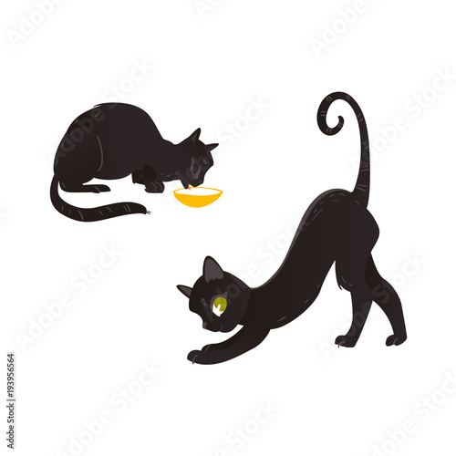 Vector Cartoon Black Cat Animals Set Funny Flat Domestic Pet