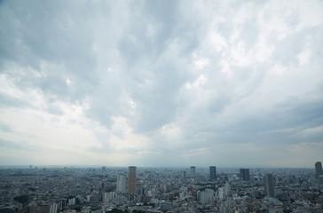 Wall Mural - 東京風景 曇り空