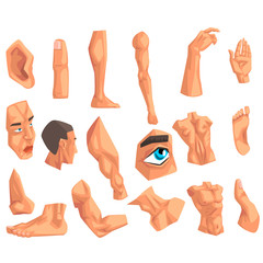 Male body parts set of vector Illustrations on a white background