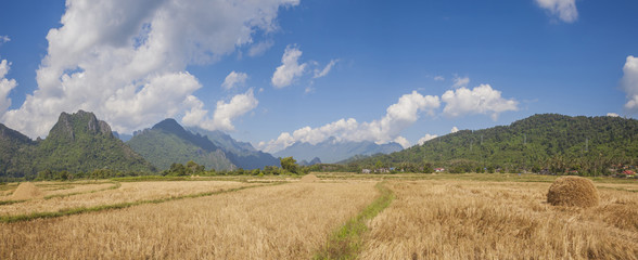 Rural landscape panorama