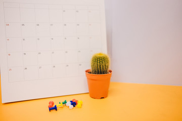 front view. business background plant placed on yellow table with calendar, pin and copy space. image for cactus, isolated, modern, decoration, nature, office, workspace concept