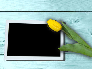 Yellow tulip and ipad, beautiful greeting card for 8 march, Women's Day, Easter