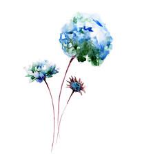 Beautiful Hydrangea flower