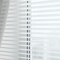 Window. Jalousie. Curtains