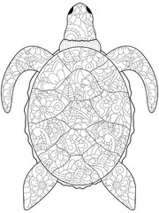 Anti stress coloring sea animal. Turtle black lines on a white background. Vector