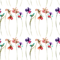 Floral seamless pattern of wild flowers