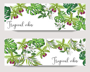 Vector horizontal exotic collection banners with hand drawn tropical leaves and flowers on white background. Design for packaging, tea shop, drink menu, homeopathy and health care products.