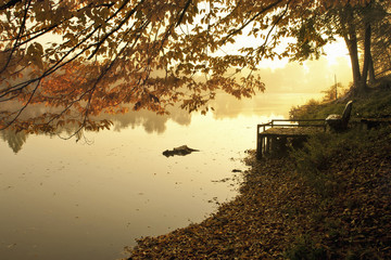 Tranquil view of lake by trees at park during autumn