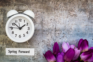 Daylight Savings Time Spring Forward concept top down view with white clock and purple tulips