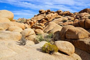Fototapete - Rocks in the desert landscape of Joshua Tree National Park, California, USA