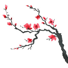 Sakura tree in Japanese painting style. Traditional Beautiful watercolor hand drawn illustration