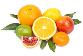 Isolated citrus fruits. Grapefruit, orange, lemon, lime  and tangerine isolated on white