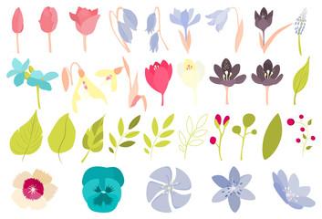 Spring flowers set.