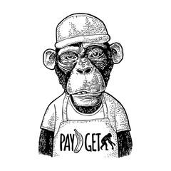 Monkeys fast food worker. Vintage black engraving for t-shirt