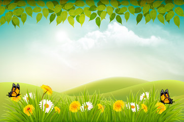 Wall Mural - Spring nature landscape background with flowers and butterflies. Vector.