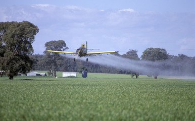 rural crop dusting wheat crop near Cowra aircraft plane