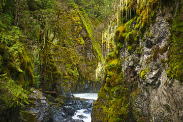 Englishman River Falls lower waterfalls in Vancouver Island, BC