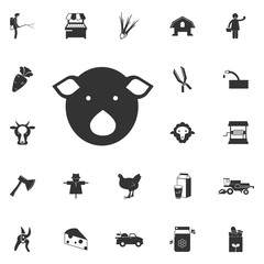 pig face icon. Element of farming and garden icons. Premium quality graphic design icon. Signs, outline symbols collection icon for websites, web design, mobile app