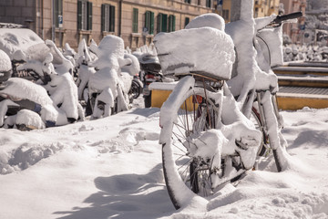 Snowy Transportation