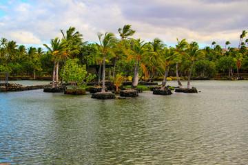 Kona area in the Big Island Hawaii