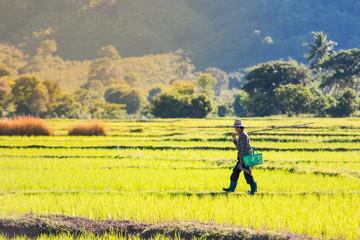 Farmers walking in rural Asia.