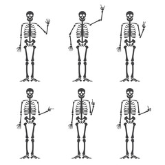 Skeleton hand gestures set: ok, finger up, finger down, fist, middle finger, Rock n roll horns, clapping palms and other emoji. Human skeleton posing isolated on white background illustration.