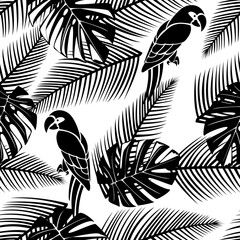 Black and white seamless tropical pattern with leaves and parrots.