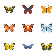 Night butterfly icons set. flat set of 9 night butterfly vector icons for web isolated on white background