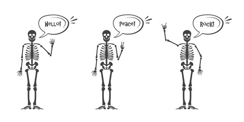 Skeleton hand gestures set. Human skeleton posing isolated on white background illustration.