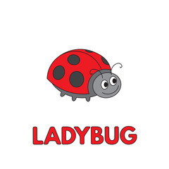 Cartoon Ladybug Flashcard for Children