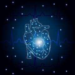 human heart polygon on ECG blue 1