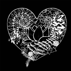 Black and white drawing of the heart, in which the lotus, fern, cone, mountains, clouds, trees. Chalk on a blackboard.