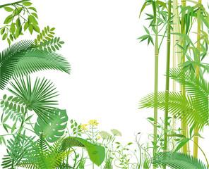 Exotische Pflanzen illustration