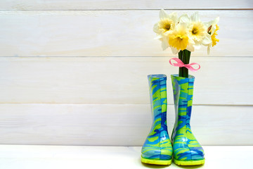 Fresh yellow daffodils in rubber boots on wooden background, copy space. Child garden wellington boots with spring flowers. Gardening concept