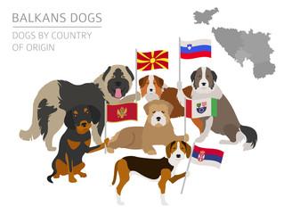 Dogs by country of origin. Balkans dog breeds: Macedonian, Bosnian, Montenegrin, Serbian, Slovenian. Infographic template