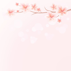 Branch of Sakura with flowers on Pink bokeh background. Apple-tree flowers. Cherry blossom. Vector