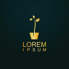 gold seed vector logo