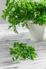 Bunch of parsley on white wooden background