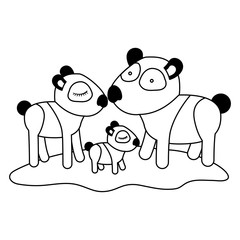cartoon pandas couple with cub over grass in black silhouette vector illustration