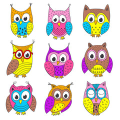 set of isolated funny owls in color - vector illustration, eps