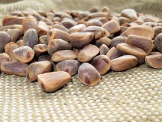 Сedar nuts. Pine nuts closeup