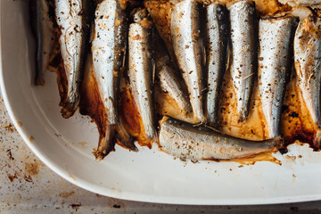 Roasted baltic herring on white plate