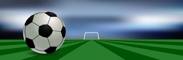 Spielfeld mit Fußball und Tor