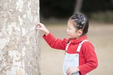 木に触る女の子