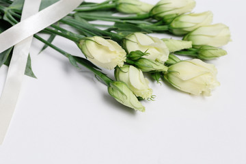 White blooming rose buds on white background with copy space. Tender roses and ribbon.