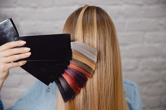 Master shows palette of hair colors on background of client's hair.