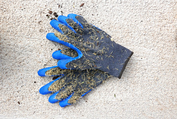 Blaue Gartenhandschuhe, übersät mit Kaktusstacheln